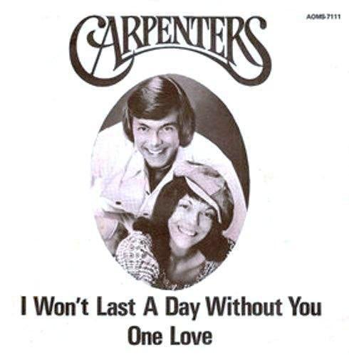 The Carpettes - The Last Lone Ranger